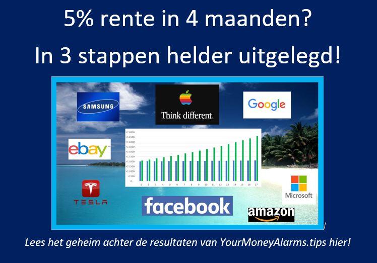 E book: 5% rente in 4 maanden
